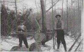 Richard and Howard Webster cutting wood