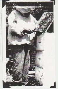 Howard Webster in apiary